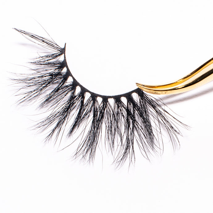 Spotlight - High Lash Darling