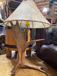 Anter Table Lamp with Rawhide Shade