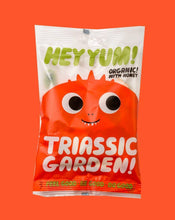 Load image into Gallery viewer, Hey Yum! | Triassic Garden Organic Candy