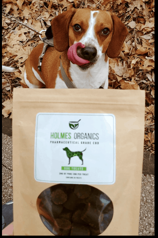 how much cbd for dog with anxiety