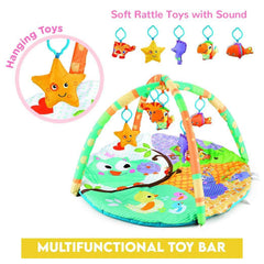 R For Rabbit First Play Tweet Play Gym for Babies