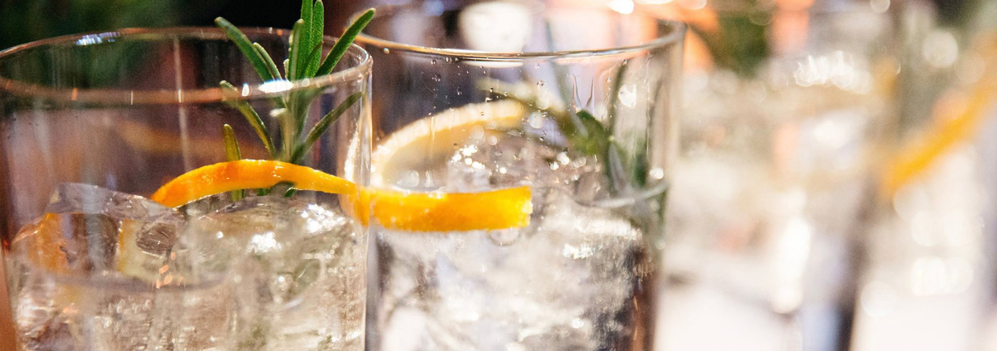 The Inebriated History of the Gin & Tonic
