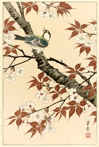 Shigeyuki: Bird and Cherry Blossoms