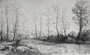 Alphonse Legros: Le bouleaux: bord de l'eau, effect du matin. (Birches: along the water, effect of morning).