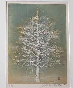 Joichi Hoshi: Early Spring- Birch Tree