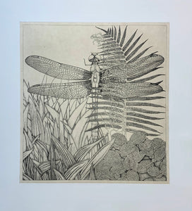 WHITMAN, George: Untitled (Dragonfly)