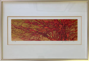 Joichi Hoshi: Red Branches