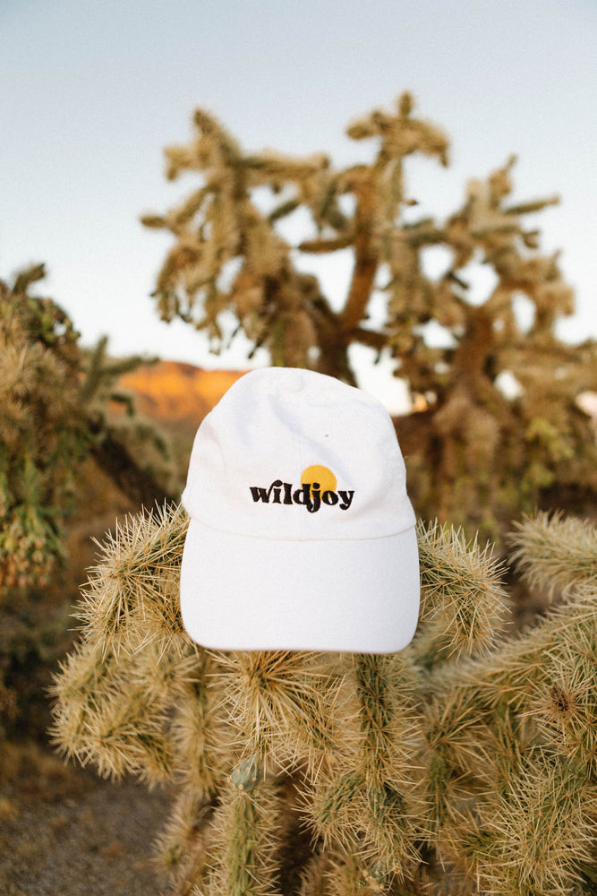 Load image into Gallery viewer, Classic Wildjoy Dad Hat