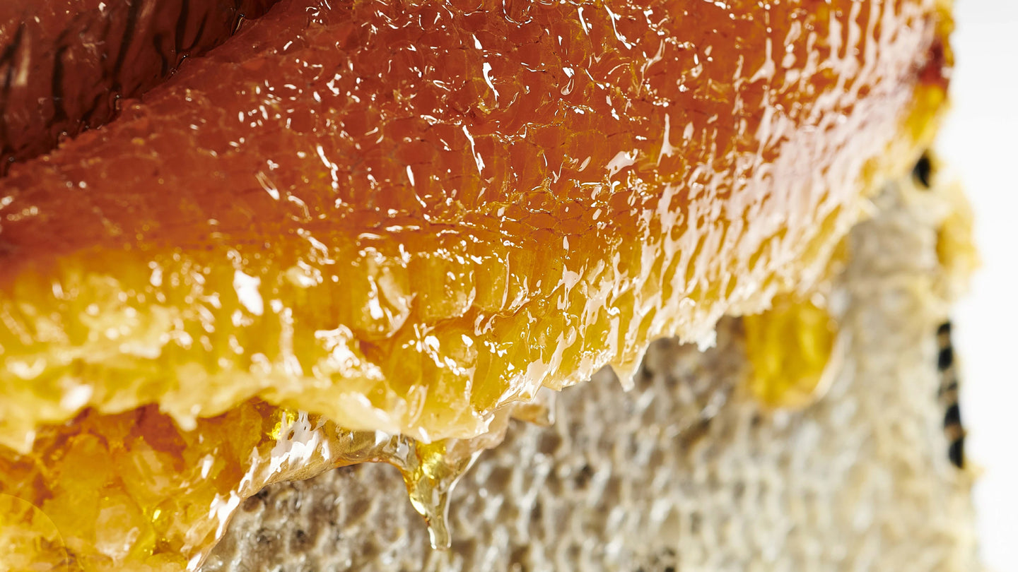 RAW & UNPASTEURIZED MANUKA HONEY