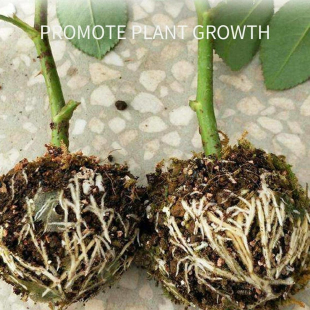 Plant Rooting Device, Plant Root Propagation Ball Containers