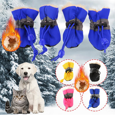 Best Dog Boots for Winter & Cold Weather