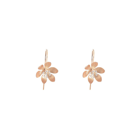 Scarlet Pimpernel Rose Gold Sterling Silver Earrings