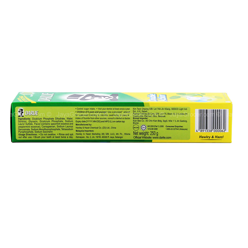 Darlie Double Action Toothpaste 250g