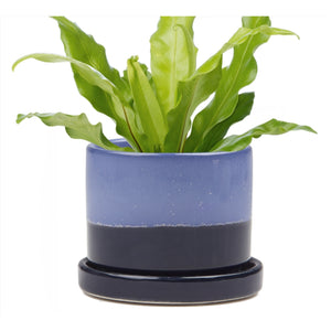 Big Minute Pot Cobalt Blue