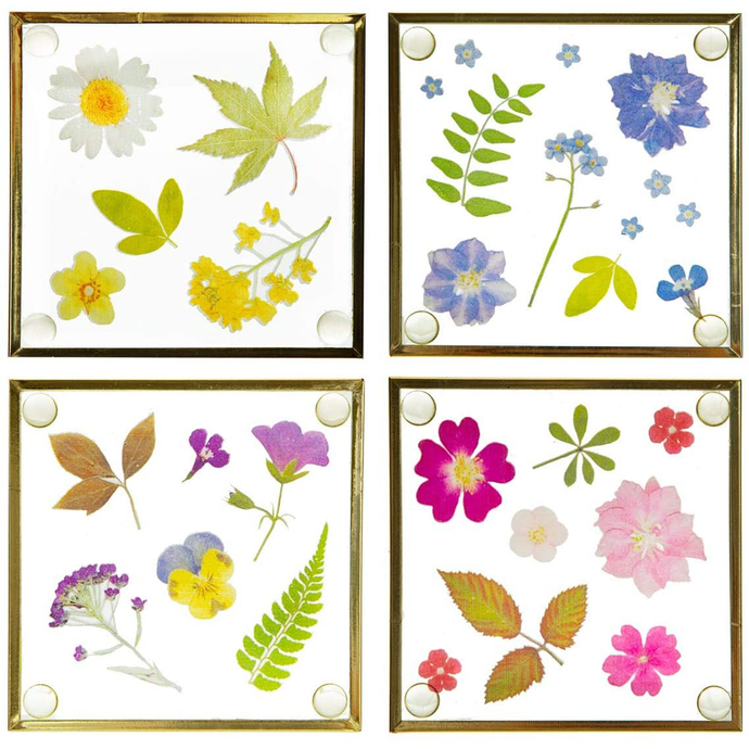 a set of four coasters with different pressed flower designs