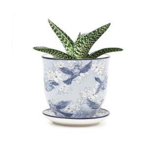 Liberte Pot and Saucer Blue Swallows