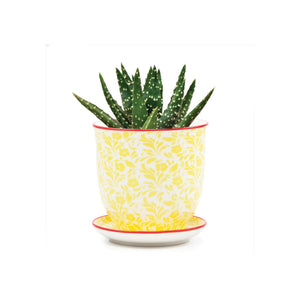 Liberte Pot and Saucer Yellow Flowers