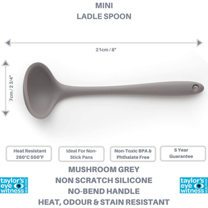 an image depicting the spec of the ladle spoon