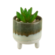 Load image into Gallery viewer, the planter holding a succulent