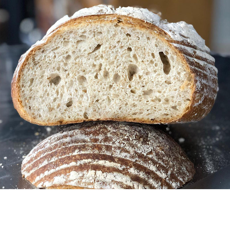 White Manchester Sourdough