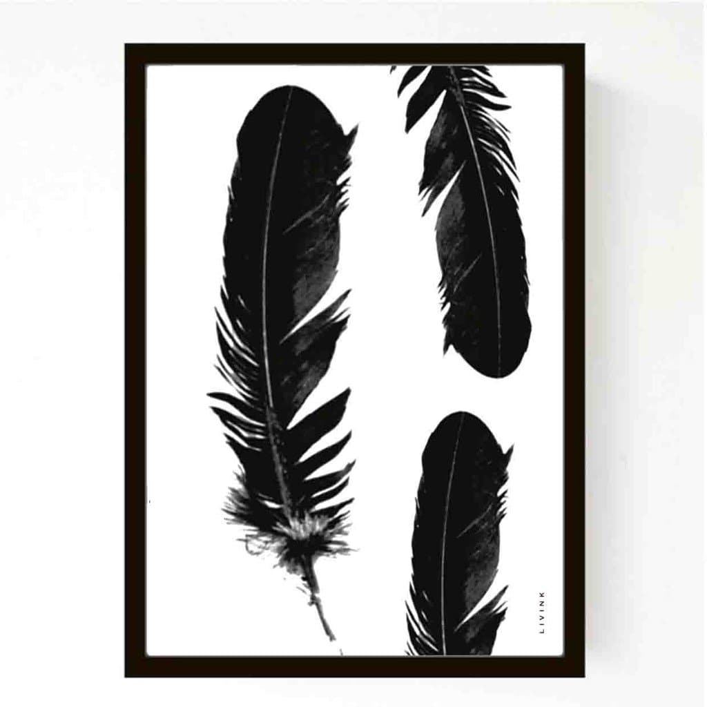 Feathers A5