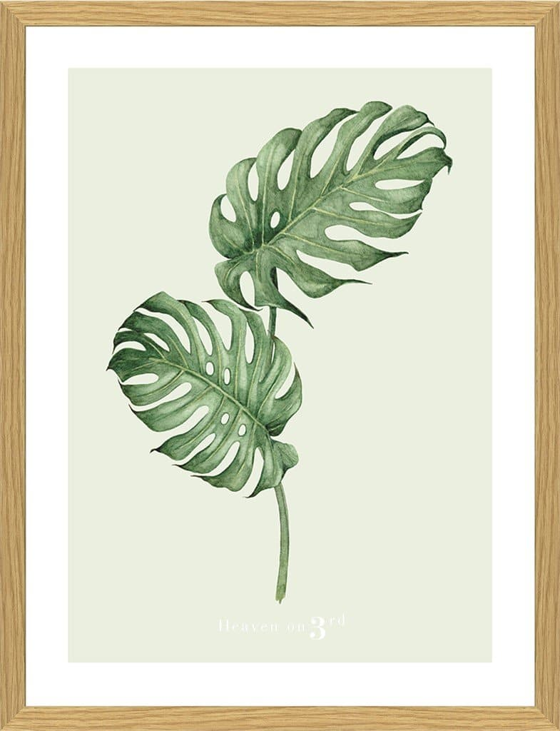 Heaven on 3rd Monstera 30x40