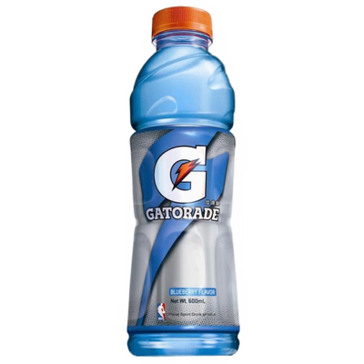 Gatorade Blueberry Bottle 15 pack (15x600ml)