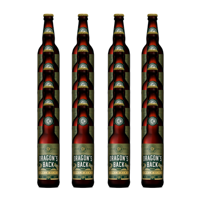 Dragon's Back Pale Ale Bottle 24 pack (24x330ml)
