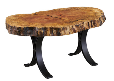Live Edge Spalted Sycamore Coffee Table with Eclipse Legs