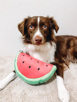 WATERMELON TOY