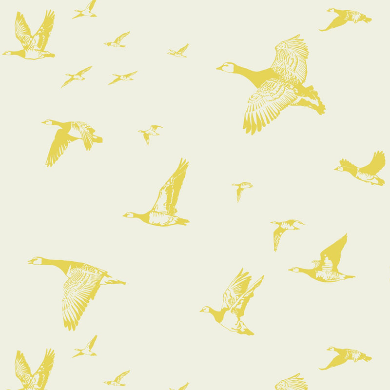 Flock in Flight Pale Sun Wallpaper