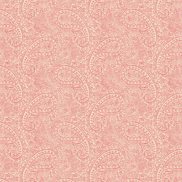 Nadi Coral Wallpaper