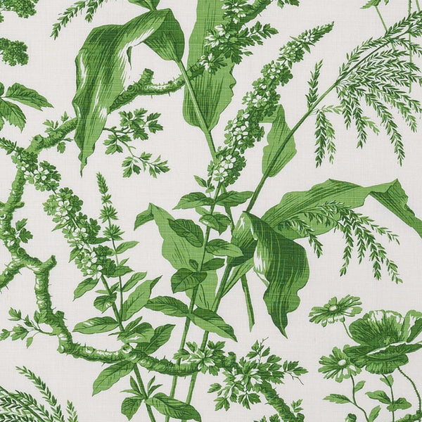 Aspa Green Wallpaper