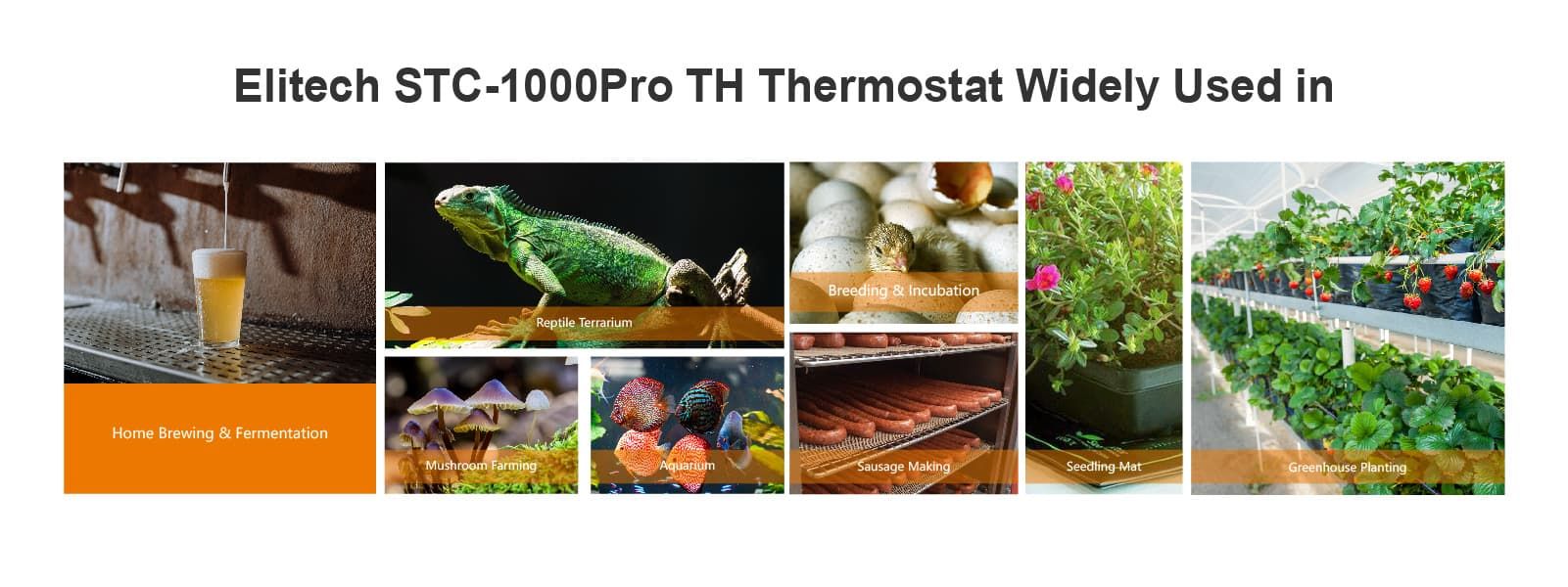 Elitech STC-1000Pro Temperature and Humidity Controller Application-Elitech UK