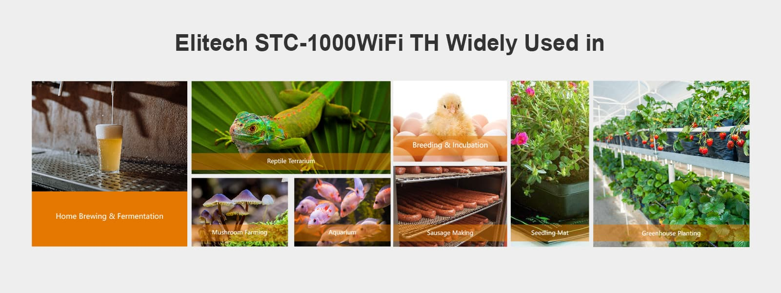 STC-1000WiFi TH Temperature and Humidity Controller Application - Elitech UK