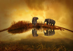 Three Elephants under Yellow Sky Wall Art