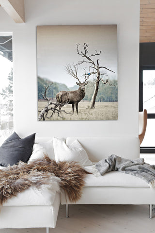 Antler Wildlife Wall Art