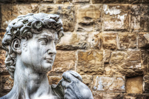 Close Up of Michelangelo's David Wall Art