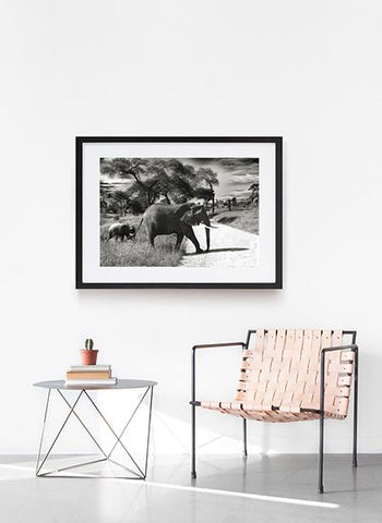 Elephant and Child Monochrome Wall Art