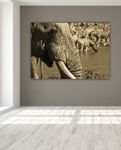 Elephant at The Waterhole Wall Art