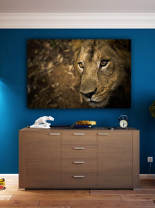 Lion Face Wall Art