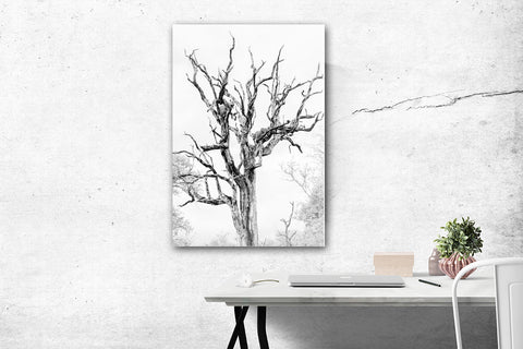 Leopard in Trees Wall Art
