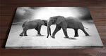 Two elephants Photo Art
