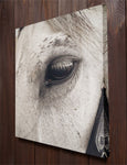 White Horse Wall Art