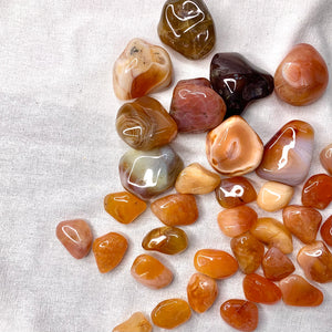 Carnelian - Energy & Motivation