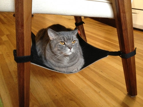 Cat Crib Unique Cat Hammock