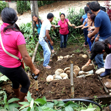 Nutritional Empowerment in the Amazon