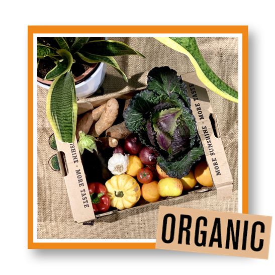 Organic Fruit & Veg Box