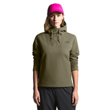 The North Face Tekno Ridge Pullover Hoodie Women's Previous Season