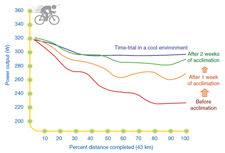 Heat acclimatization and performance